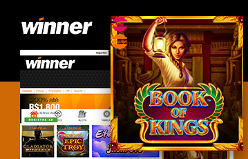 Winner Casino Usabilidade
