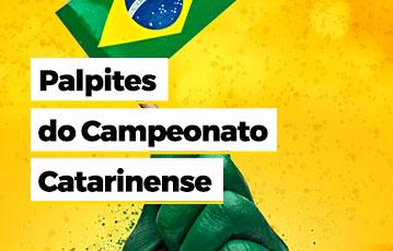 Mão Bandeira Brasil