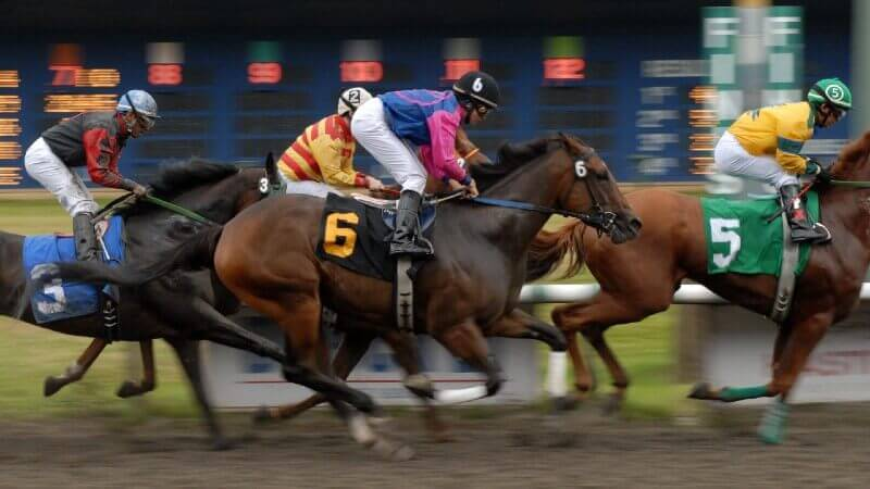 Horse racing betting strategies for Canada