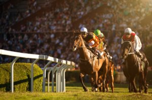 Best Betting Site & Bookmaker for Horse Racing Canada