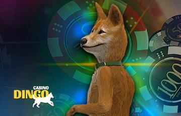 Dingo Casino Pros y contras