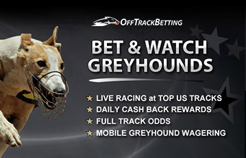 Off Track Betting Greyhound US