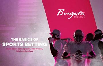 Borgata sport betting