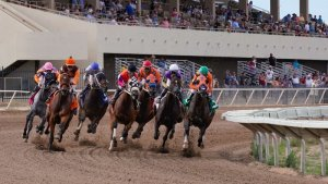 Horse racing betting online usa