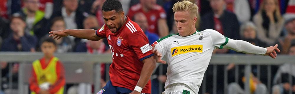 Bundesliga 24. Spieltag