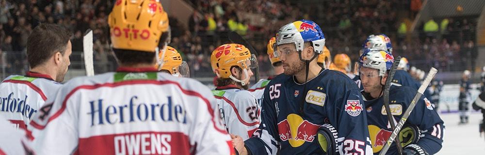 Die besten Online Sportwetten Close-up Eishockeyspieler auf dem Eis handshakes