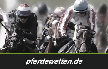 Pferdewetten.de Pros und Contras