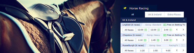 Online betting horse racing legal horse racing betting tips books